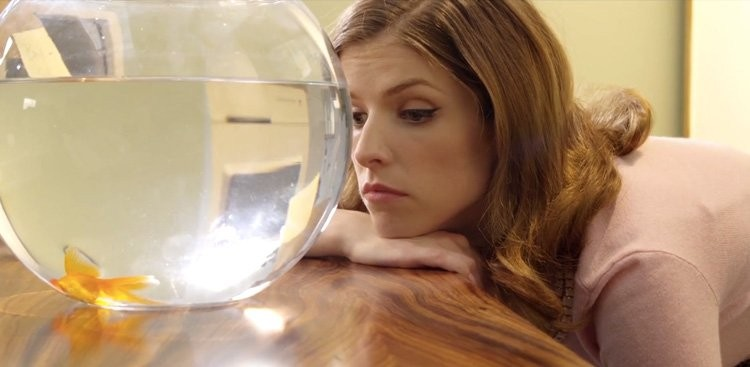 Career Guidance - Anna Kendrick Knows Exactly How We Feel on a Slow Day