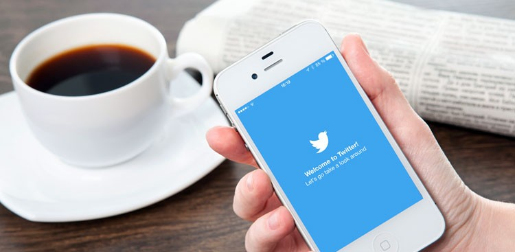 Career Guidance - 15 Job Search Experts to Follow on Twitter