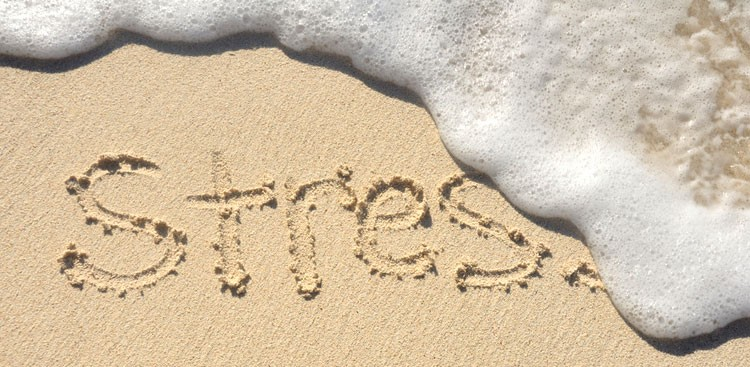 Career Guidance -  5 Unconventional (but Totally Effective) Ways to Beat Stress