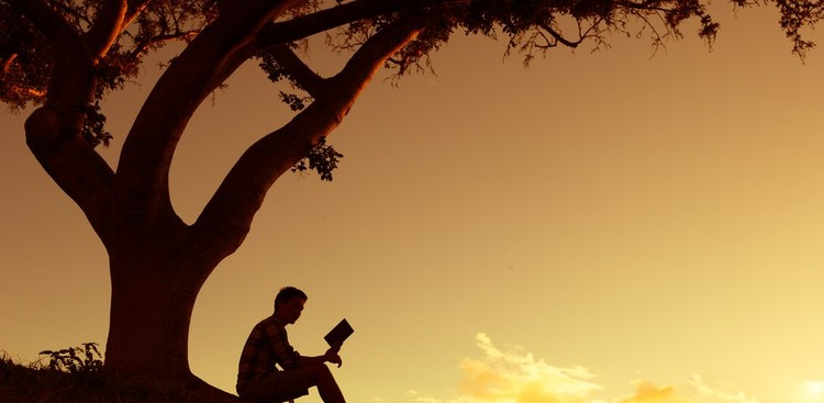 Man reading on a hill