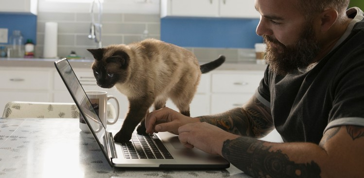 7 Things to Know About Working Remotely