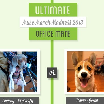 Career Guidance - Muse March Madness 2013: Lemony vs. Teemo