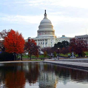 Career Guidance - 5 Great Excuses to Dine Alone in Washington, DC