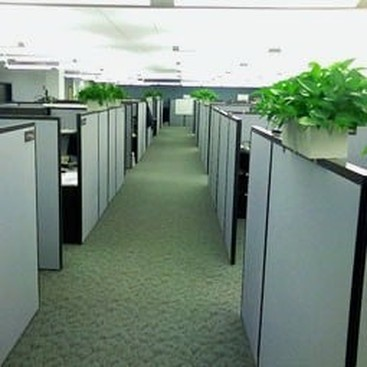Career Guidance - Think Outside the Cube: Why the Office Isn't the Best Workspace