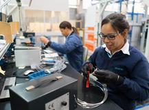 Siemens culture