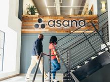 Asana culture