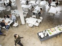 Squarespace culture