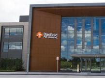 Banfield Pet Hospital culture