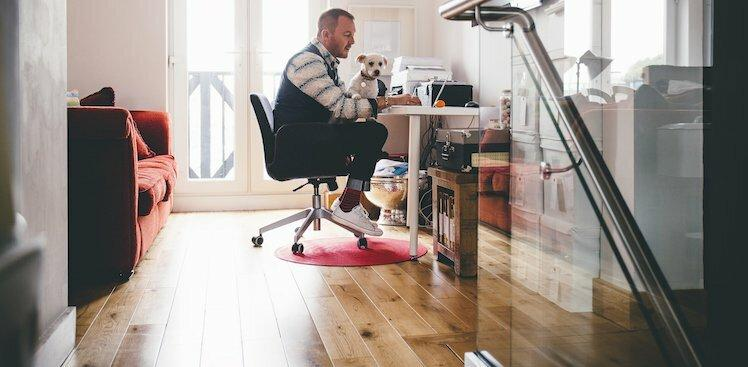 person sitting at desk on laptop with dog