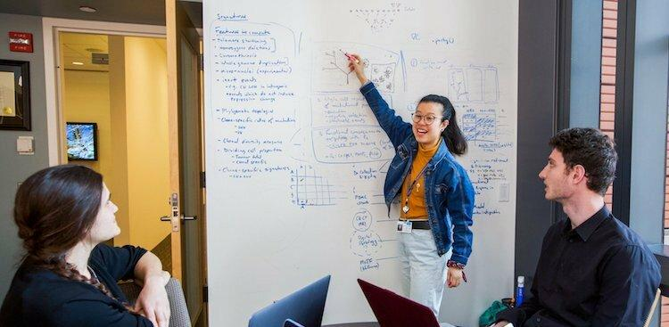 a Memorial Sloan Kettering Cancer Center employee presenting work on a whiteboard