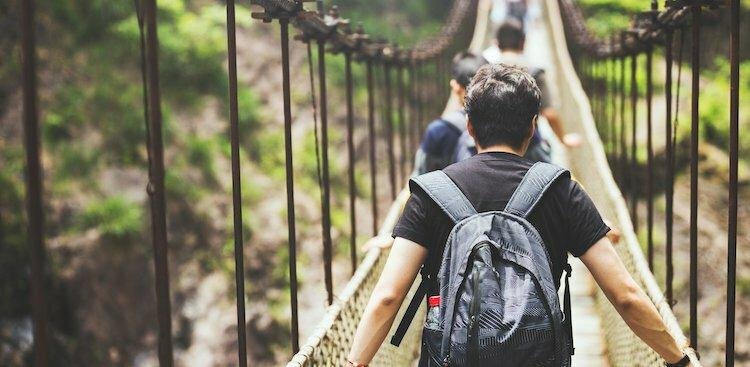 people walking on suspension bridge in forest