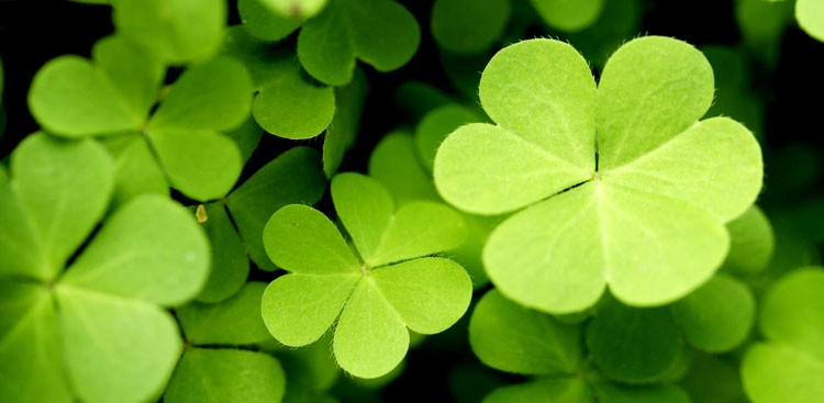 5 Powerful Ways to Create Luck, Happiness, and Success
