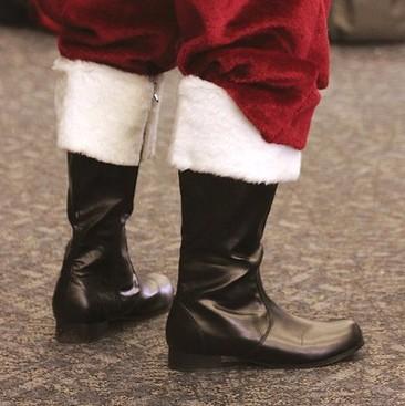 Career Guidance - What is Santa's Carbon Footprint?