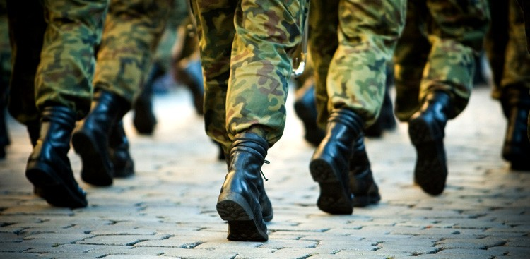 How to Get a Job as a Veteran - Veteran's Day - The Muse
