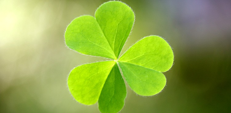 Career Guidance - 9 Ways to Create Your Own Luck
