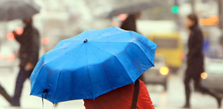 Career Guidance - Why You Shouldn't Hate Those Rainy Days So Much