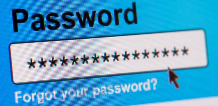 Career Guidance - How a Password Changed My Life—and 11 Other Things to Know This Week