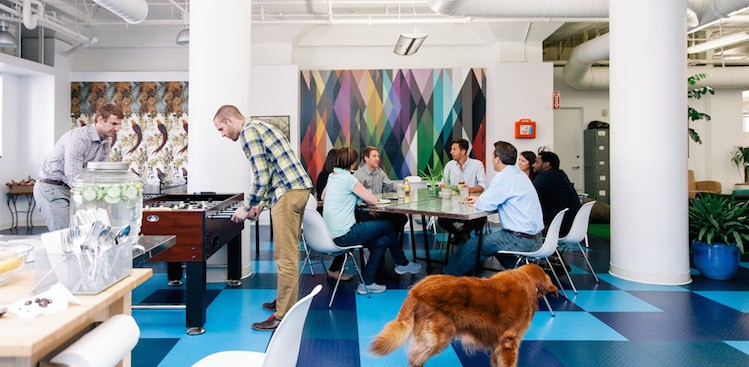Career Guidance - Peek Inside Prezi's Gorgeous SF Offices