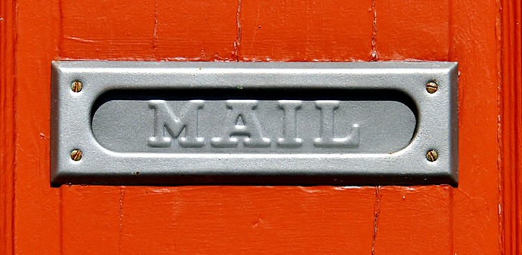 Mail slot in door
