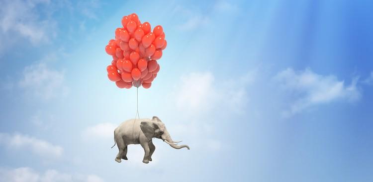 Promotion elephant