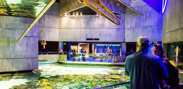 Careers at The National Aquarium