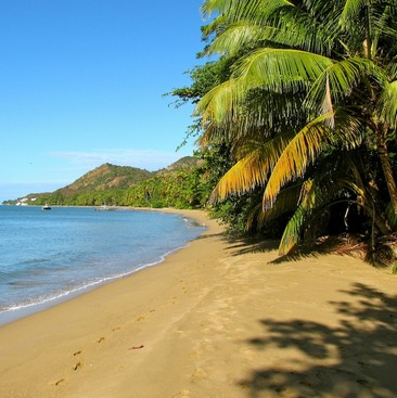 Career Guidance - Want an Adventure? Beach Camping in Puerto Rico