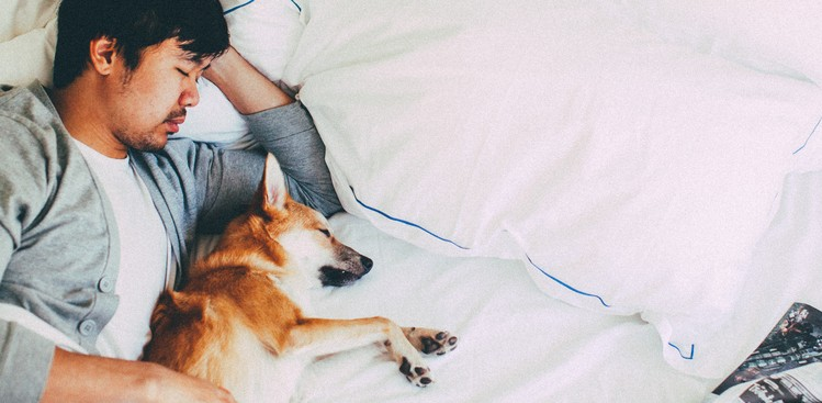 Yes, You Can Solve Big Problems in Your Sleep