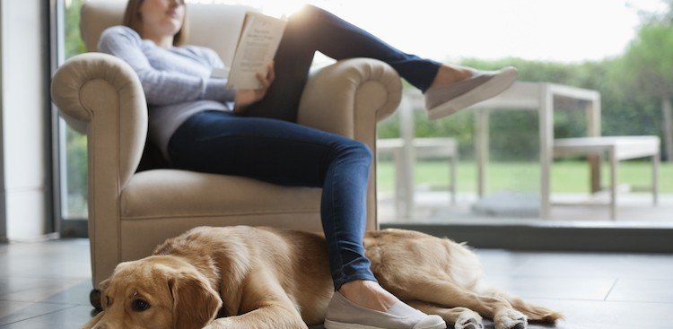 Career Guidance - The Best Way to Read a Book in 90 Minutes (and Still Learn Something)