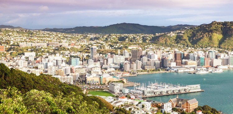 Get a Free Trip and Dream Job in New Zealand - The Muse