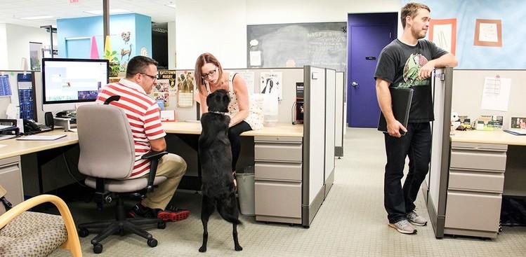 Career Guidance - 7 Awesome Companies Hiring in Philadelphia