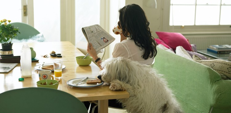 Sciences Says Breakfast Makes You More Productive - The Muse