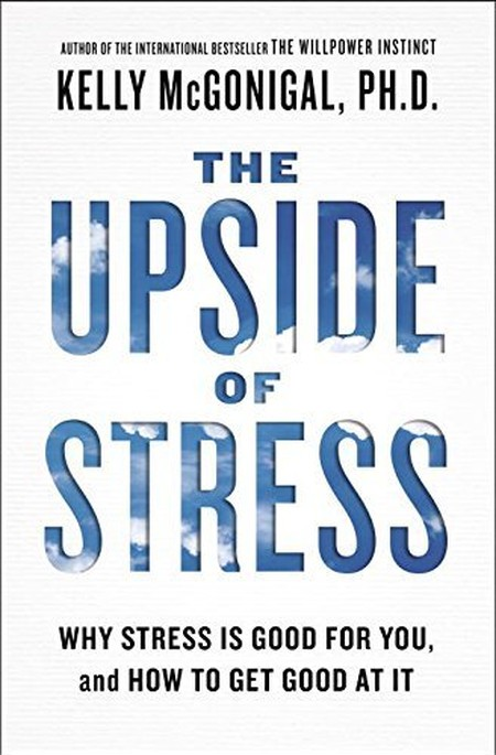 best books by women the upside of stress