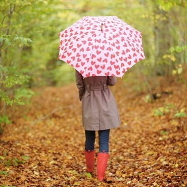 Career Guidance - Links We Love: How to Survive a Rainy Day