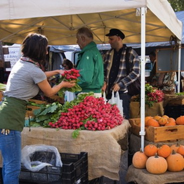Career Guidance - 5 Easy (and Cheap) Ways to Eat Local