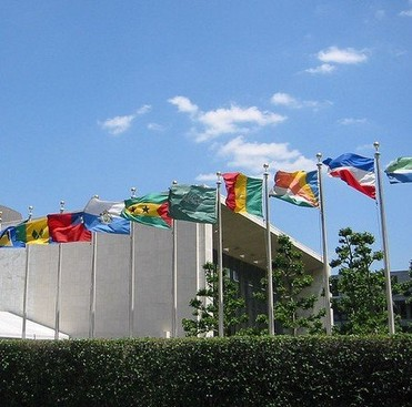 Career Guidance - Should You Get a Master's in International Relations?