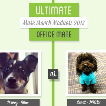 Career Guidance - Muse March Madness 2013: Dewey vs. Scout