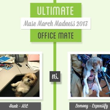 Career Guidance - Muse March Madness 2013: Hank vs. Lemony