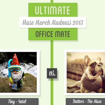 Career Guidance - Muse March Madness 2013: Tiny vs. Butters