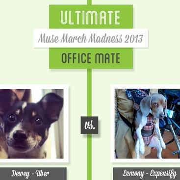 Career Guidance - Muse March Madness 2013: Dewey vs. Lemony