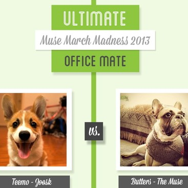 Career Guidance - Muse March Madness 2013: Teemo vs. Butters