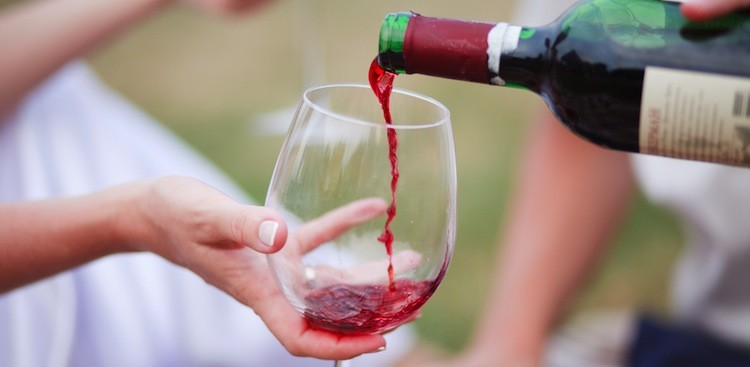 Career Guidance - What's a Tannin? (And Other Wine Words You Should Know)