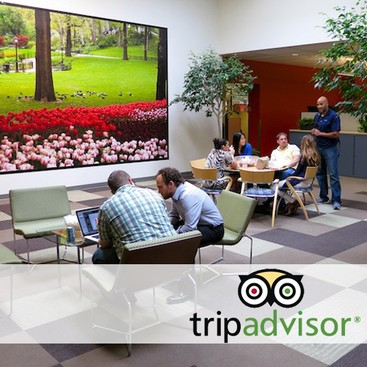 Career Guidance - 5 Companies Travel Buffs Will Love