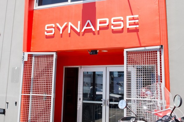 Synapse culture