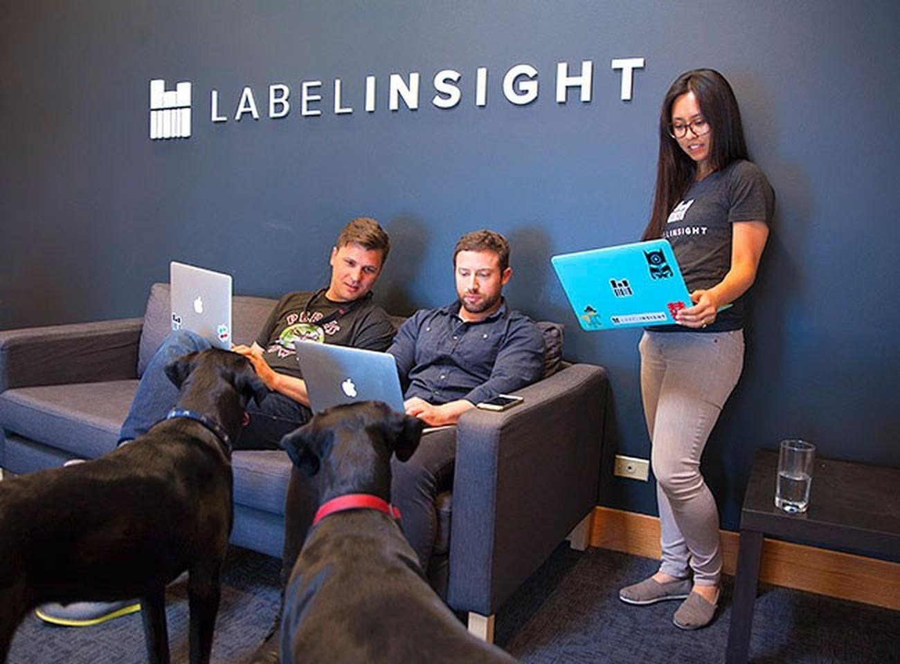 Label Insight Careers