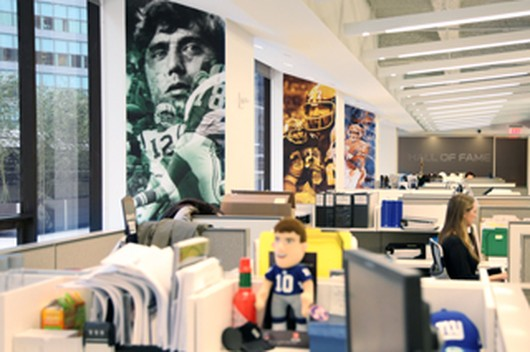 NFL Company Image