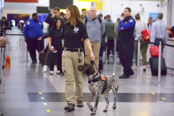 Transportation Security Administration culture