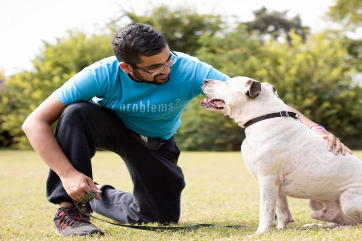 Austin Pets Alive! company profile