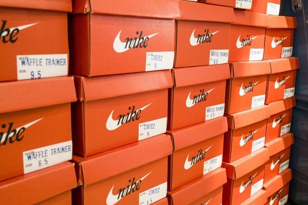 Nike, Inc. snapshot