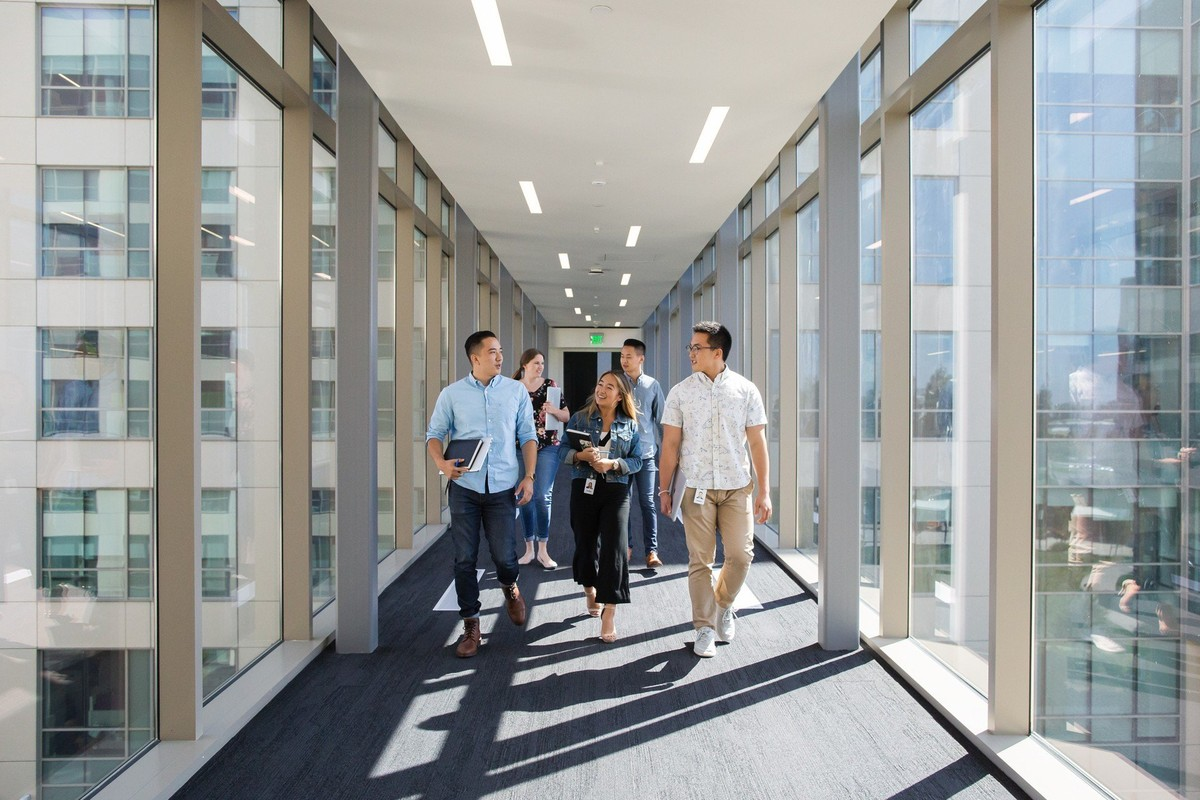 Palo Alto Networks company profile