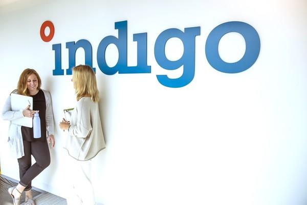 Indigo culture